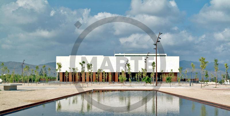 Joan Feliu   MARTE Feria Internacional de Arte Contemporáneo